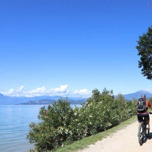 Bike tour between vineyards and wine tasting in Colà di Lazise